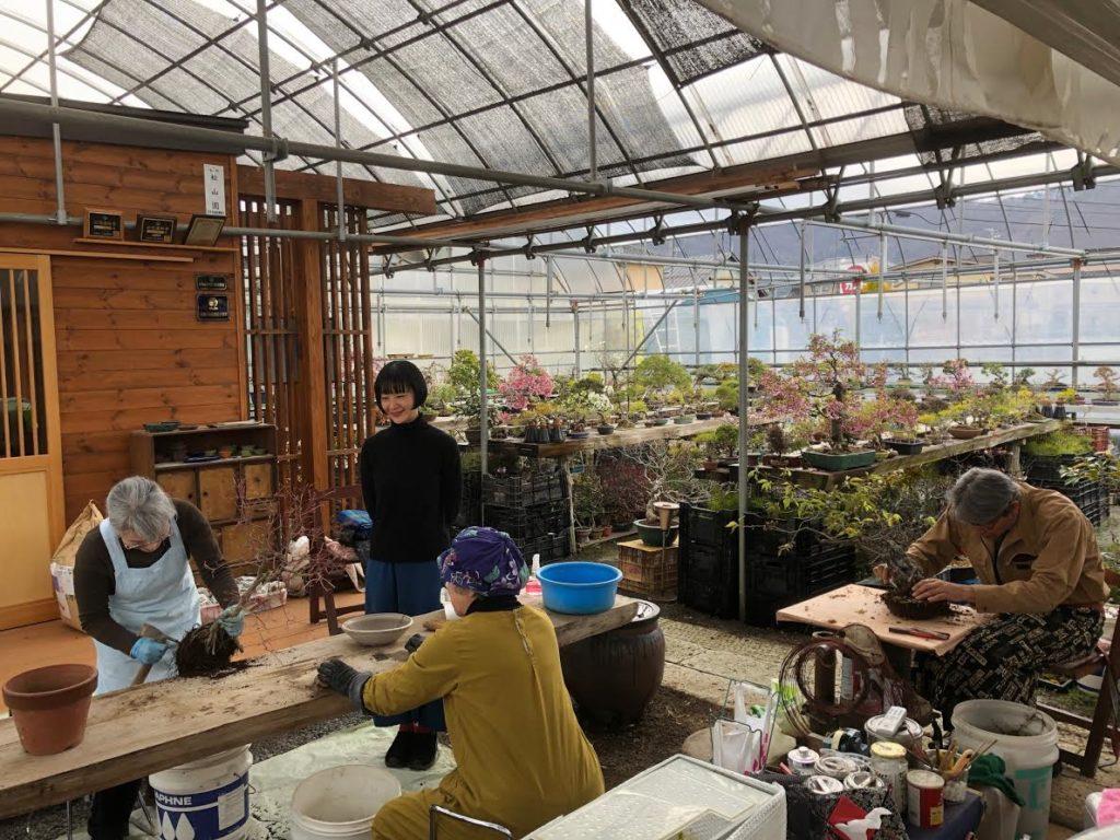 盆栽研究家の川崎仁美さんに植え替えレッスンをご覧いただきました