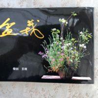 とても素晴らしい自然盆栽の本
