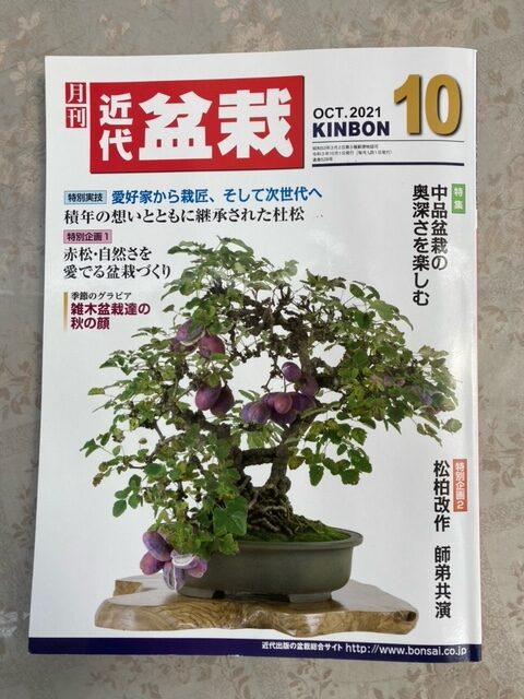 掲載していただいた月刊近代盆栽10月号の表紙